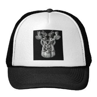 Rabbit-ear barnacle hats