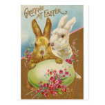 Rabbit Easter Greetings Vintage Post Cards
