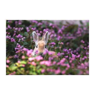 Rabbit farm canvas print