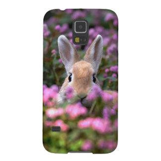 Rabbit farm galaxy s5 cover
