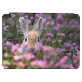 Rabbit farm iPad air cover