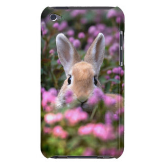 Rabbit farm iPod touch cover