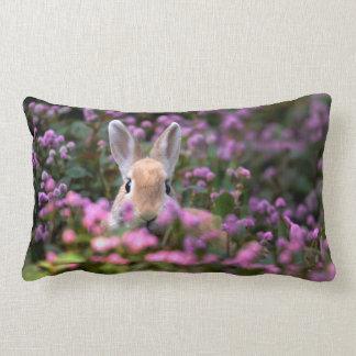 Rabbit farm lumbar cushion