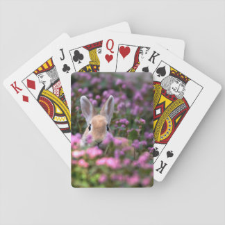 Rabbit farm playing cards