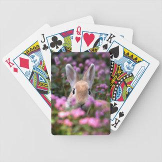 Rabbit farm poker deck