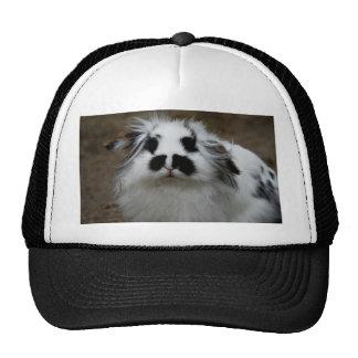 Rabbit Mesh Hat