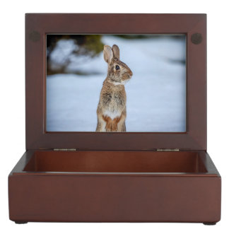 Rabbit in the snow keepsake box