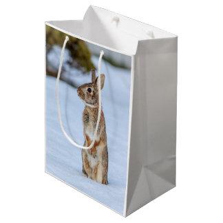 Rabbit in the snow medium gift bag