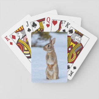 Rabbit in the snow playing cards