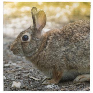 rabbit in the woods napkin