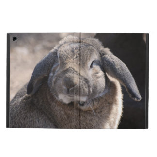 Rabbit iPad Air Case