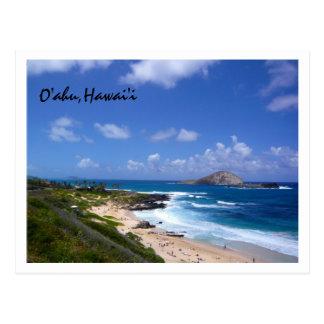 Rabbit Island Postcard