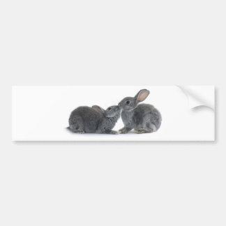 Rabbit Kiss Bumper Sticker
