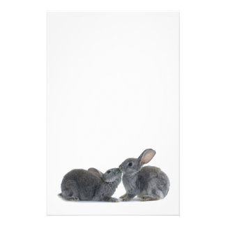 Rabbit Kiss Stationery