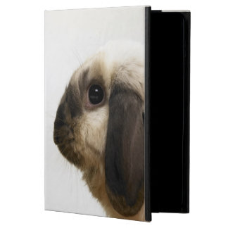 Rabbit looking at rabbit case for iPad air