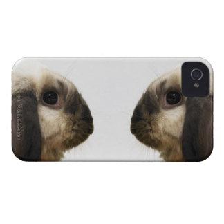 Rabbit looking at rabbit iPhone 4 case