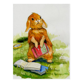 Rabbit loves to read Postcard