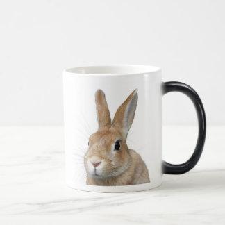 Rabbit Morphing Mug