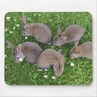 Rabbit Mouse Mat