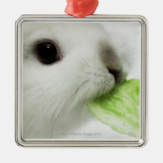 Rabbit nibbling lettuce leaf, close-up christmas ornament