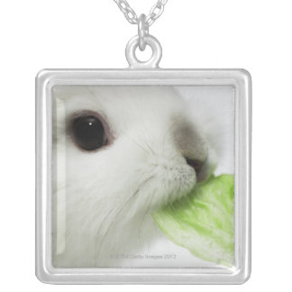 Rabbit nibbling lettuce leaf, close-up silver plated necklace