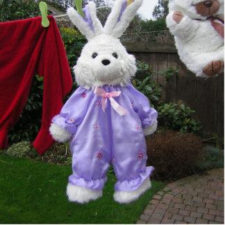 Rabbit on a washing line Photo Sculpture