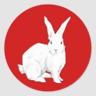 Rabbit red Sticker