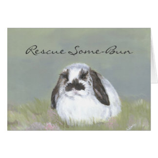 Rabbit Rescue Card