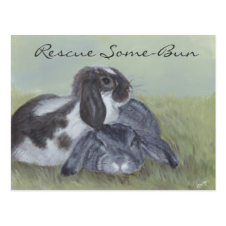 Rabbit Rescue Card Postcard