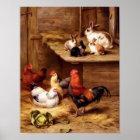 Rabbit rooster hens pets farm animals bunnies poster