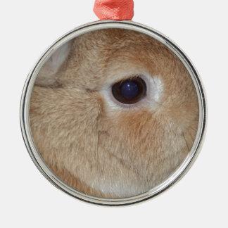 Rabbit Silver-Colored Round Decoration