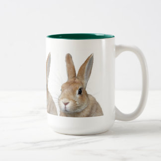 Rabbit Two-Tone Coffee Mug