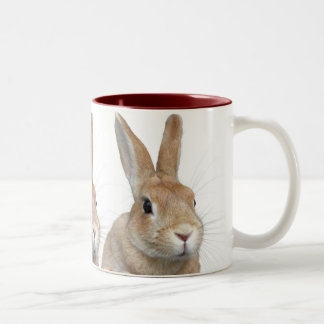 Rabbit Two-Tone Mug
