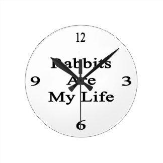 Rabbits Are My Life Clock
