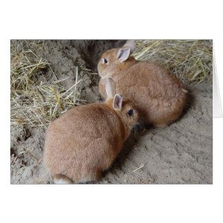 Rabbits Note Card