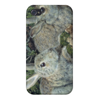 Rabbits Cover For iPhone 4