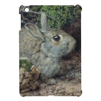 Rabbits Cover For The iPad Mini
