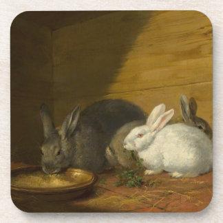 Rabbits Eating Art Coasters