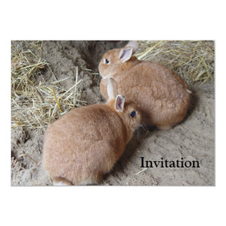 Rabbits Personalized Invitations