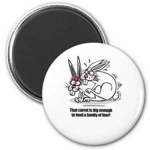 rabbits mating, rabbits boinking magnets