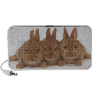 Rabbits Netherland Dwarfs Laptop Speakers