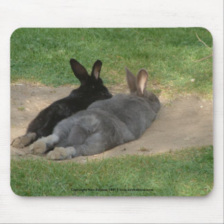 Rabbits stretched out - Mousemat. Customise. Mouse Mat