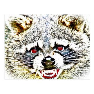 Rabid Raccoon Postcard