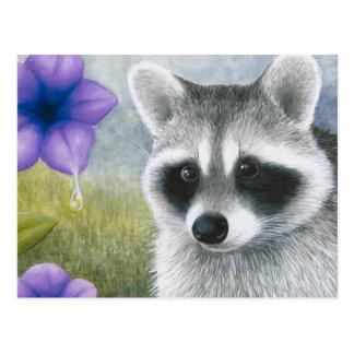 Raccoon 20 postcard