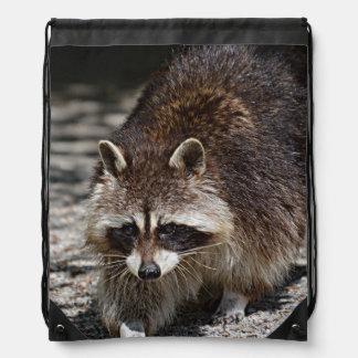 raccoon 415P Backpacks