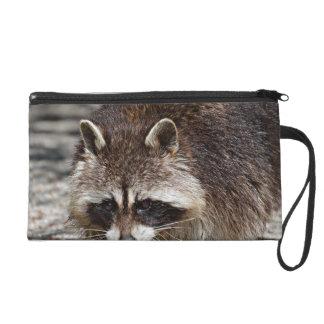 raccoon 415P Wristlet Purses