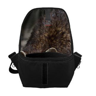 raccoon 415P Messenger Bags