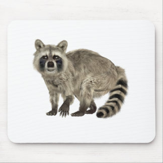 Raccoon at Attention Mouse Pad