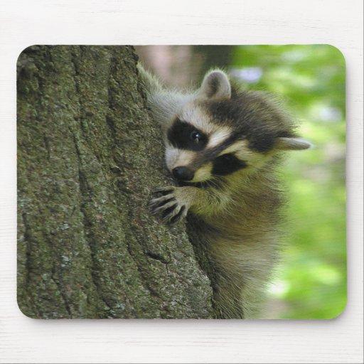 Raccoon Baby Mousepad