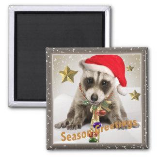 Raccoon baby Season Greetings Square Magnet